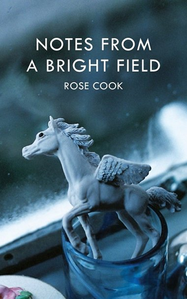 Notes-From-A-Bright-Field-book-cover